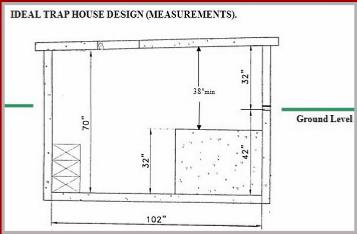 Trap House Designs House Decor
